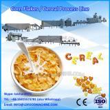 potato chips/sticks processing machine