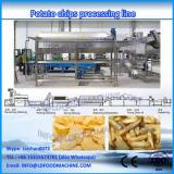 french fries&potato chips frying production